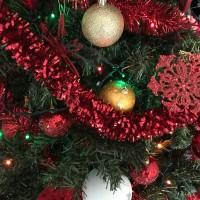 Auguri di Buon Natale e di uno Nuovo Anno insieme