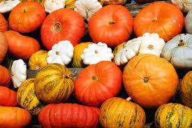Zucca: l'arancione che fa bene alla salute. Ottima per la bellezza e utilissima per contrastare alcune malattie